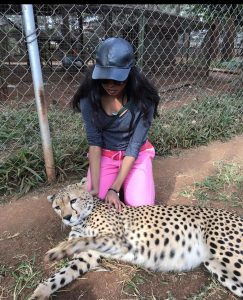 Why I dedicated my time and money to a cheetah